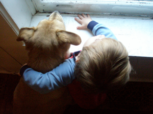 Dog and child loking out of window