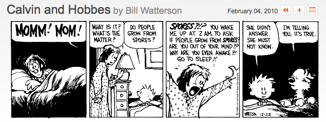 Calvin and Hobbes 02042010